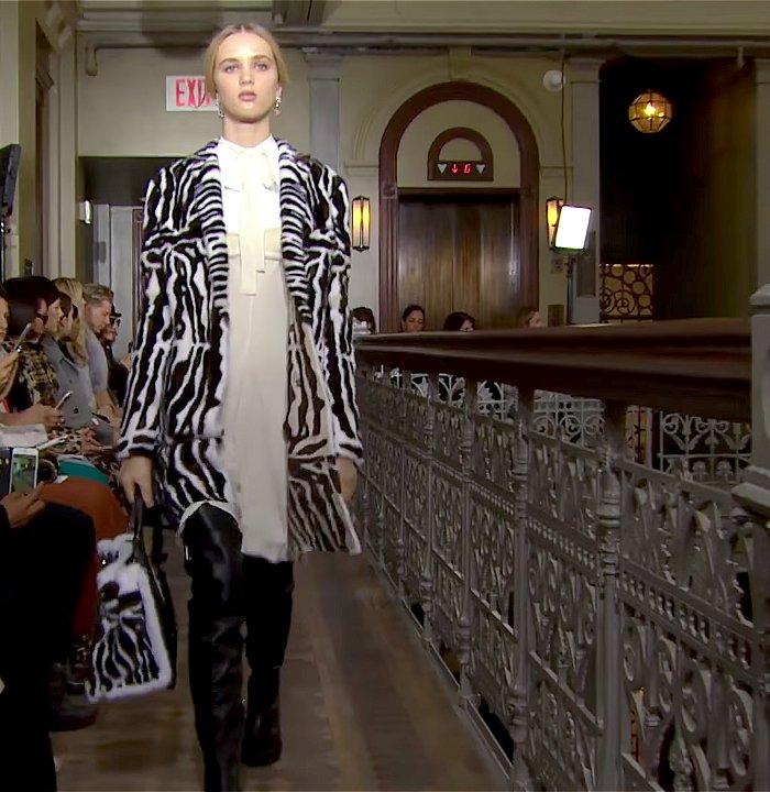 Valentino zebra coat